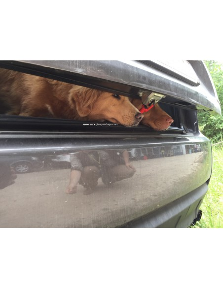 Ventlock Fahrzeugbelüftung